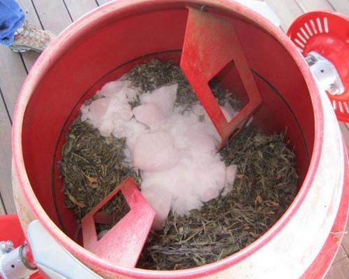 מערבל עם גזירים, עלים וקרח יבש לפני העיבוד. שימו לב שחתיכת קרח אחת גדולה מדי!