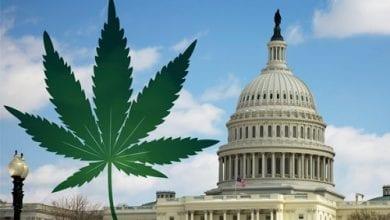"Photo of הבית הלבן ירוק: לגליזציה בוושינגטון בירת ארה""ב"