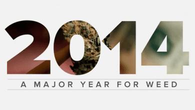 Photo of צפו: סיכום 2014 – שנת הקנאביס הגדולה