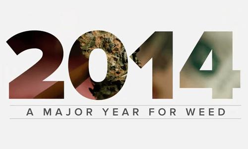 2014 - שנת הקנאביס הגדולה