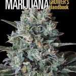 Ed Rosenthal's Cannabis Growing Handbook