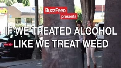 Photo of עולם הפוך: אם היינו מתייחסים לאלכוהול כמו לקנאביס