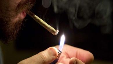 Photo of 8 סיבות מדוע אסור לעשן מריחואנה לעולם