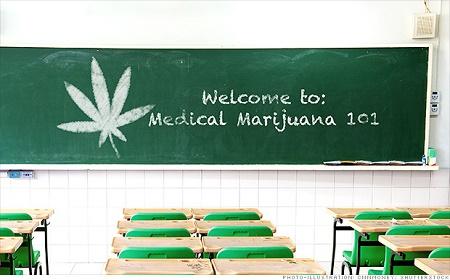 Budgets für das Bildungssystem und vielleicht sogar für Cannabis.