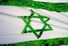 9 סיבות טובות לעשות את הקנאביס חוקי בישראל