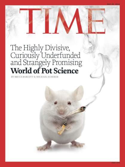 2015 - עתיד מזהיר לקנאביס בעולם המדע