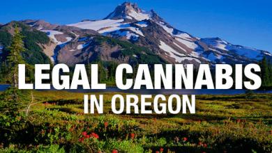 Photo of אחרי וושינגטון וקולורדו: קנאביס חוקי גם במדינת אורגון