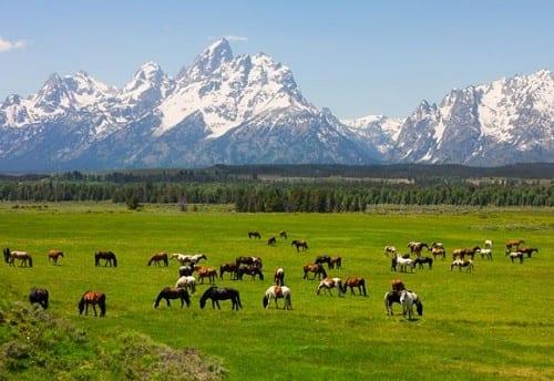 דקוטה הצפונית - בשביל נוף אולי שווה לשלם כפול