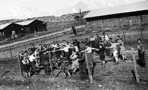 פיסת היסטוריה: השאכטות בכלא המנדט הבריטי