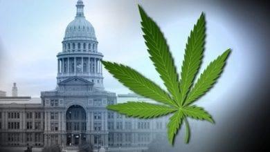Photo of הבאה בתור: ועדת חקיקה בטקסס אישרה לגליזציה של מריחואנה