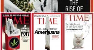 מגזין TIME קנאביס