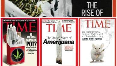 Photo of שני עשורים וחמישה שערים: TIME ללגליזציה