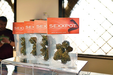 Sexxpot - חדש על המדף