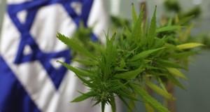 דה קרימינליזציה בישראל