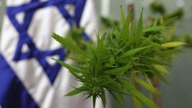 Photo of שיאנית העולם: זינוק של פי 4 בצריכת קנאביס בישראל