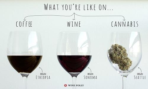 המוח שלכם על קנאביס, יין וקפה