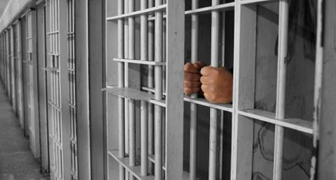 אליין פרינס פטרון - מאסר עולם על החזקת מריחואנה