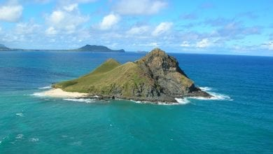 Photo of 'אי מריחואנה' נתגלה באזור חצי האי קרים
