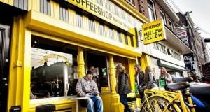 קופישופ Mellow Yellow באמסטרדם