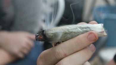Photo of אונ' חיפה בדקה: כמה קנאביס מעשן ישראלי ביום?