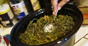 מדריך: הכנת שמן קנאביס בסיר לבישול איטי
