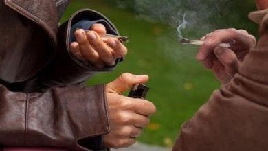 Photo of מחקר: עישון קנאביס במשך 20 שנה לא פוגע בתפקוד הריאות