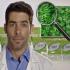 לראשונה בישראל: סרטון הדרכה למשתמש המתחיל בנושא קנאביס רפואי