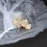 קריטסלים של MDMA