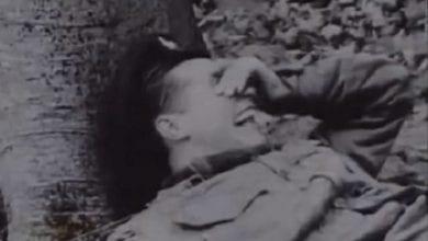חייל בריטי תחת השפעת LSD