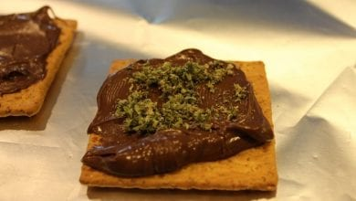 Photo of קנאביס נוטלה: מתכון לממרח שוקולד אגוזים