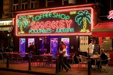 קופישופ בעיר אמסטרדם, הולנד