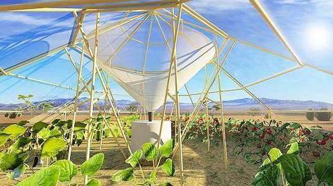 אוהל לגידול יבולים חקלאיים בתנאי מדבר קיצוניים