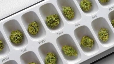 Photo of 4 תרופות שאפשר להחליף כבר היום בקנאביס
