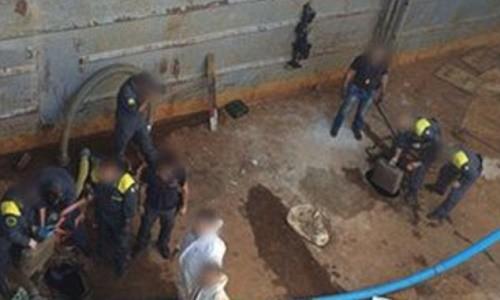 צוות חיפוש הברחות סמים בתוך האוניה 'יופיטר'