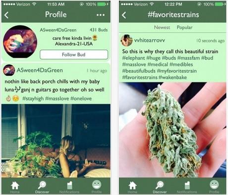 אפליקציה לשיתוף תמונות וסטטוסים אודות מריחואנה