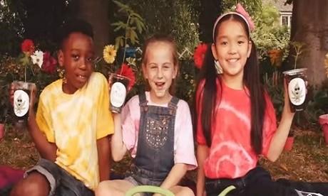 ילדים מגדלים קנאביס המפ