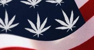 """דגל ארה""""ב עם עלי מריחואנה במקום כוכבים"""