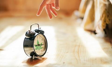 שעון מעורר עם ציור של עלה מריחואנה