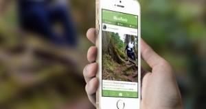 5 אפליקציות קנאביס 2015
