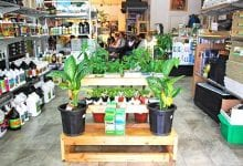 Photo of המדריך לקניית ציוד בחנויות גידול (הידרו)