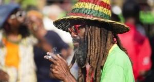 'גביע הקנאביס' מגיע לג'מייקה
