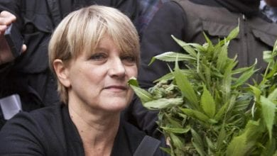 "Photo of נעצרה הפוליטיקאית שגידלה קנאביס לחולים: ""תכניסו אותי לכלא כמו כולם"""