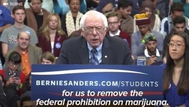 """Photo of ברני סנדרס: """"מריחואנה צריכה להיות חוקית כמו טבק"""""""