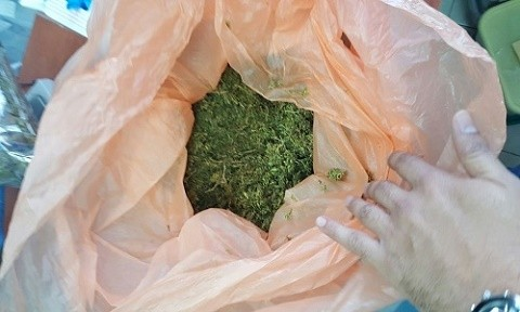 Marijuana seized at home - 6 a kilogram worth more than half a million shekels