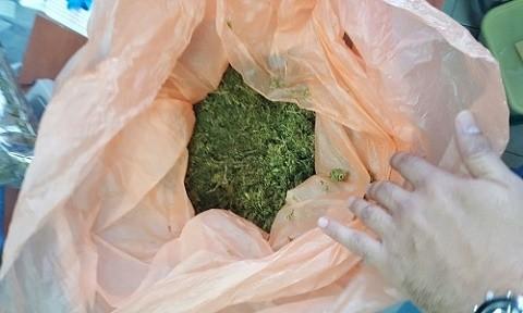 מריחואנה שנתפסה בבית - 6 קילוגרם בשווי של למעלה מחצי מיליון שקל