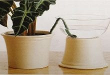 5 דרכים להשקיה אוטומטית