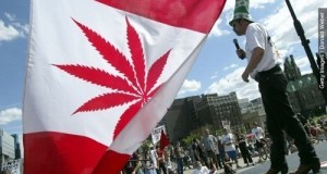 קנדה בדרך ללגליזציה