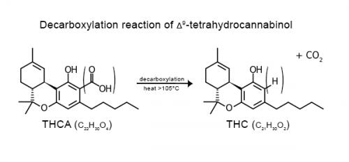 דה קרבוקסילציה: כך הופך ה-THCA ל-THC