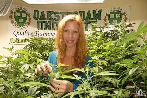 דייל סקיי ג'ונס - מנהלת בית ספר למקצועות הקנאביס באוקלנד, קליפורניה