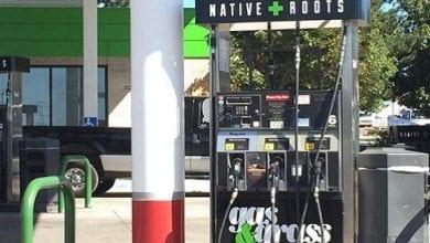 Photo of גז וגראס: תחנות דלק בקולורדו מוכרות קנאביס